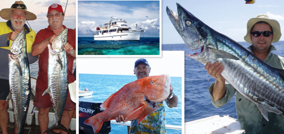 6-10 day trips to Swain Reefs ex Yeppoon