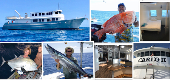 7 day Swains Reefs trip. 100ft brand new boat