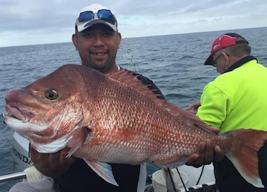 Target big Port Phillip Bay Snapper