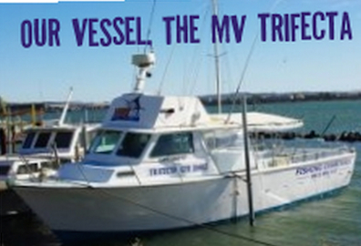The MV Trifecta is 38ft and takes up to 10 anglers