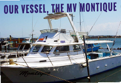 The MV Montique is 38ft and takes up to 12 anglers