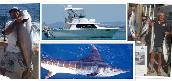 Marlin, reef and sports fishing available
