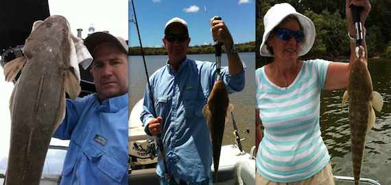 Land some nice flathead with Moreton Bay Charters