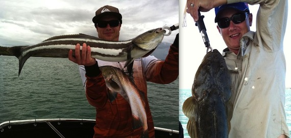 Catch Moreton Bay Cobia, Flathead, Snapper and more