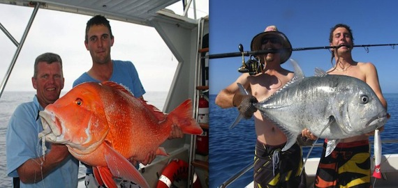Great fish. Great value. Great Barrier Reefari from $2000pp